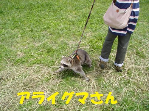 032_convert_20110516010528.jpg