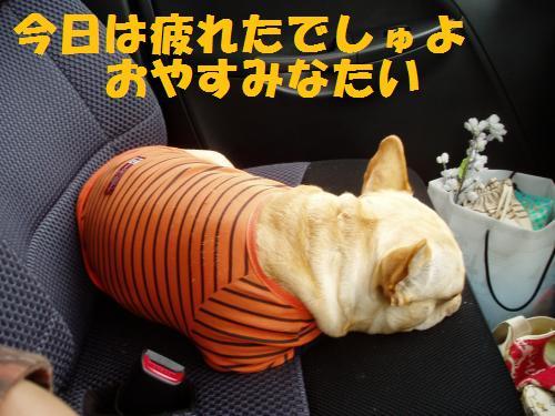 036_convert_20110418005424.jpg