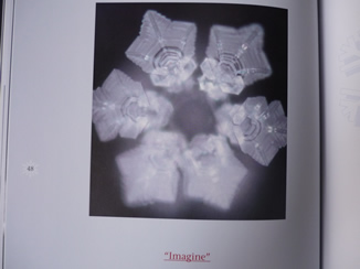 P1000637.jpg
