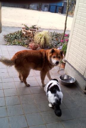 2012-01-11riki (1)