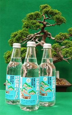 bonsai-main.jpg