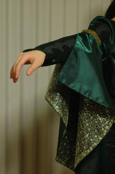dress2012219-4.jpg