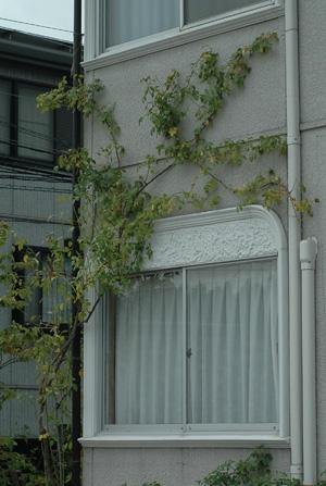 wall2011726-1.jpg