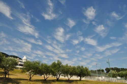 綿毛のような雲