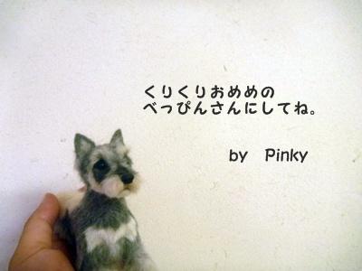 ○P1160069
