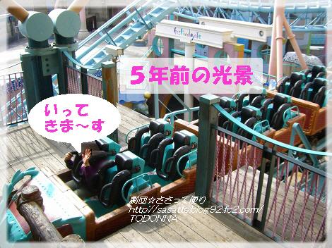 CIMG0919-s2.jpg