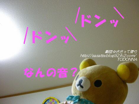 DSCN8671-s1.jpg