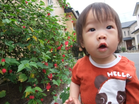 ブログ用 2009.9月 003