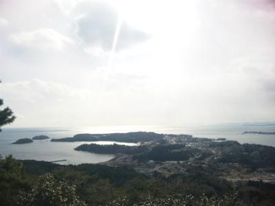 亀山山頂から見た大島の市街地