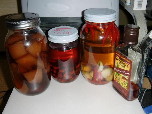 果実酒たち