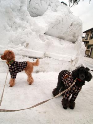 雪いっぱい