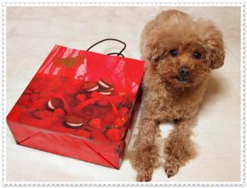 真っ赤な袋
