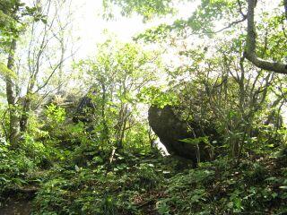 39484146_2911082261頂上付近の巨石