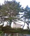 NEC_36515352.jpg