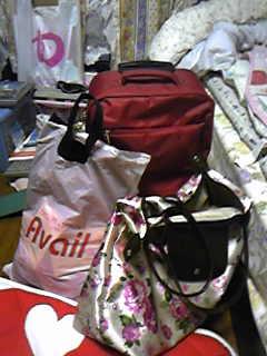 キャリーにお菓子+ペーパーの袋に服入れるカバン。ひー重たそう;