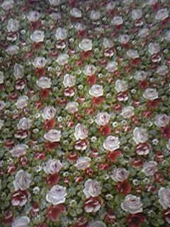 以前買った花柄布。あと3m欲しいんだけど、そんなにあったかしら・・・