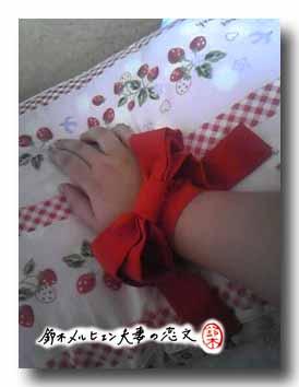 赤ブレスレットチョーカー、腕に巻いてみても可愛いことに気付く。