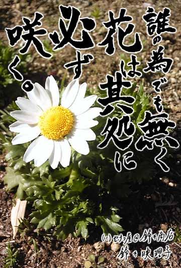 鈴木映理子の書を合成した東日本大震災チャリティーポストカード1番。