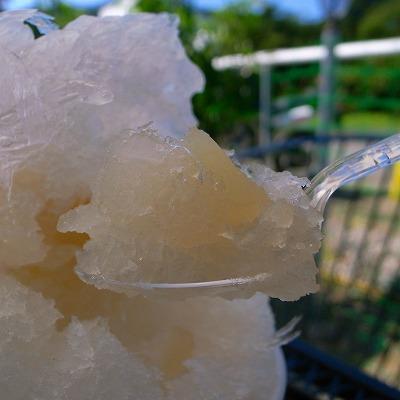 2011-09-07 山田屋 017