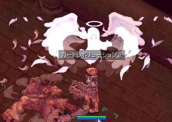 2009_6_27_1.jpg