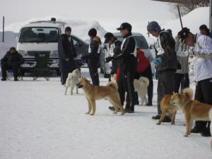 20120219夕張_9