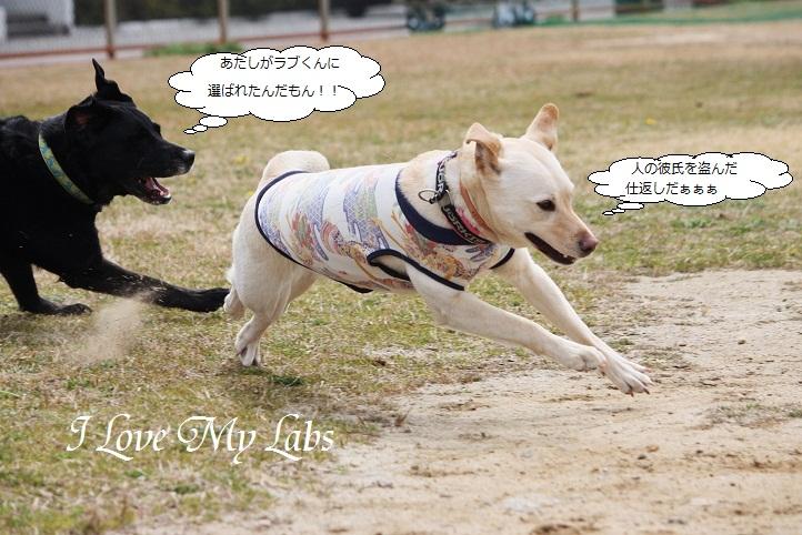 IMG_4921.jpg