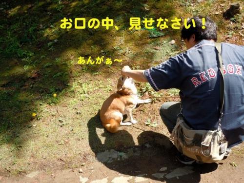 DSCN3344_2.jpg