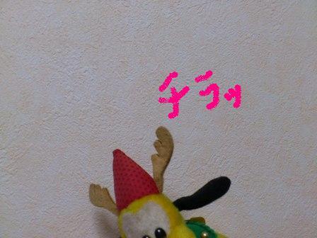P11-12-01_2234.jpg