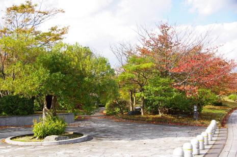 バーディ・宍道湖07