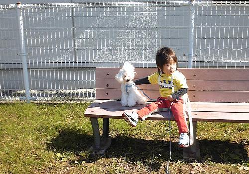 Image1059a_20111014221415.jpg