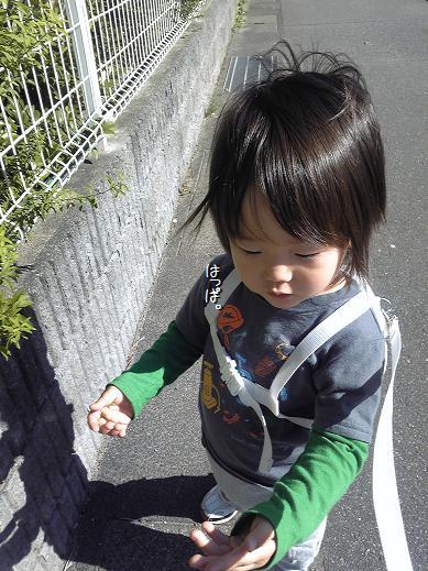 Image1154a_20111022003933.jpg