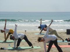 yoga30703.jpg