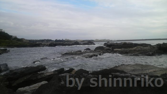 諸磯の海、前方は見えませんが城ヶ島