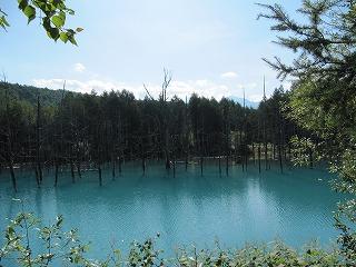青い池。。。