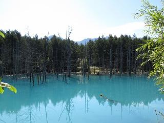 青い池 9.2