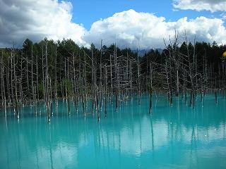 9.26青い池
