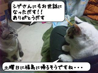 せんじゅう7