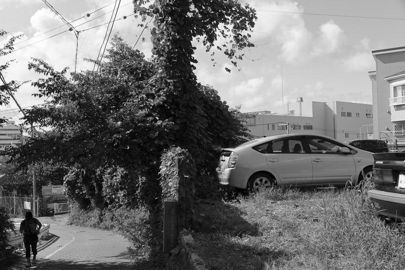 5_mid_summer20110815.jpg