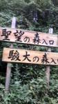 20090905_1.jpg