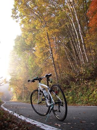紅葉サイクリング 1