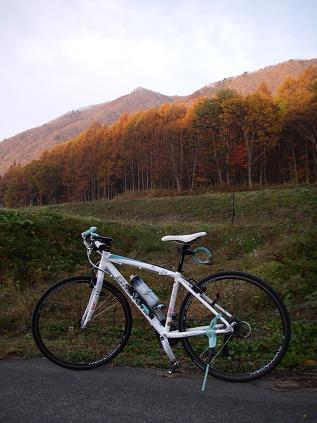 紅葉サイクリング 2