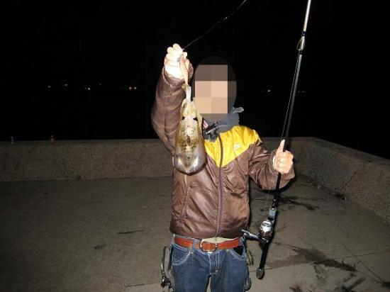 2009/10/15チョビさんイカ1