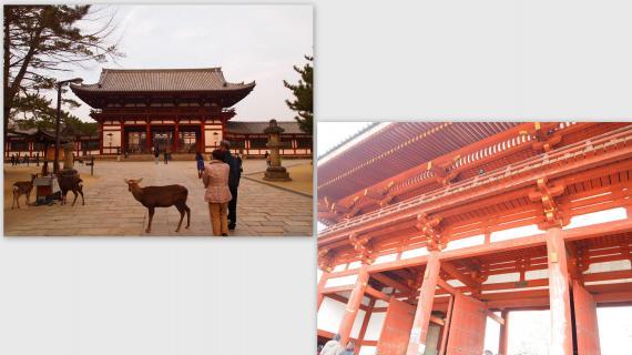 2011-02-0511_convert_20110301155204.jpg