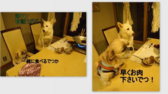 2011-02-0514_convert_20110304012106.jpg