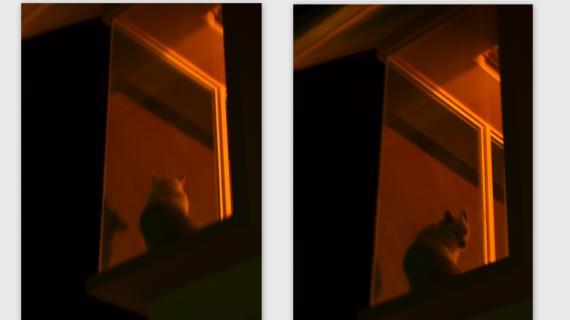 2011-02-0518_convert_20110304012249.jpg