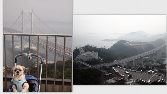 2011-02-0613_convert_20110310001158.jpg