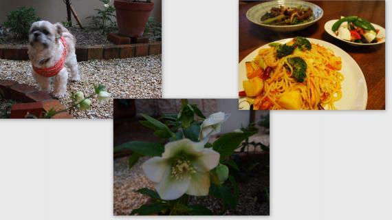 2011-03-01_convert_20110305012733.jpg
