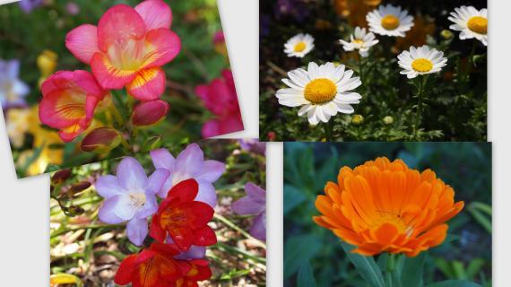 2011-04-182_convert_20110511002229.jpg