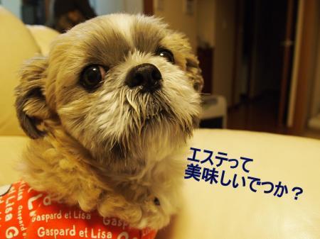 ・搾シ姫3012112_convert_20110305013435