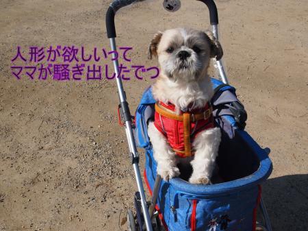 ・搾シ儕2221718_convert_20110309011922